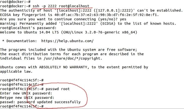11_docker_change_root_password